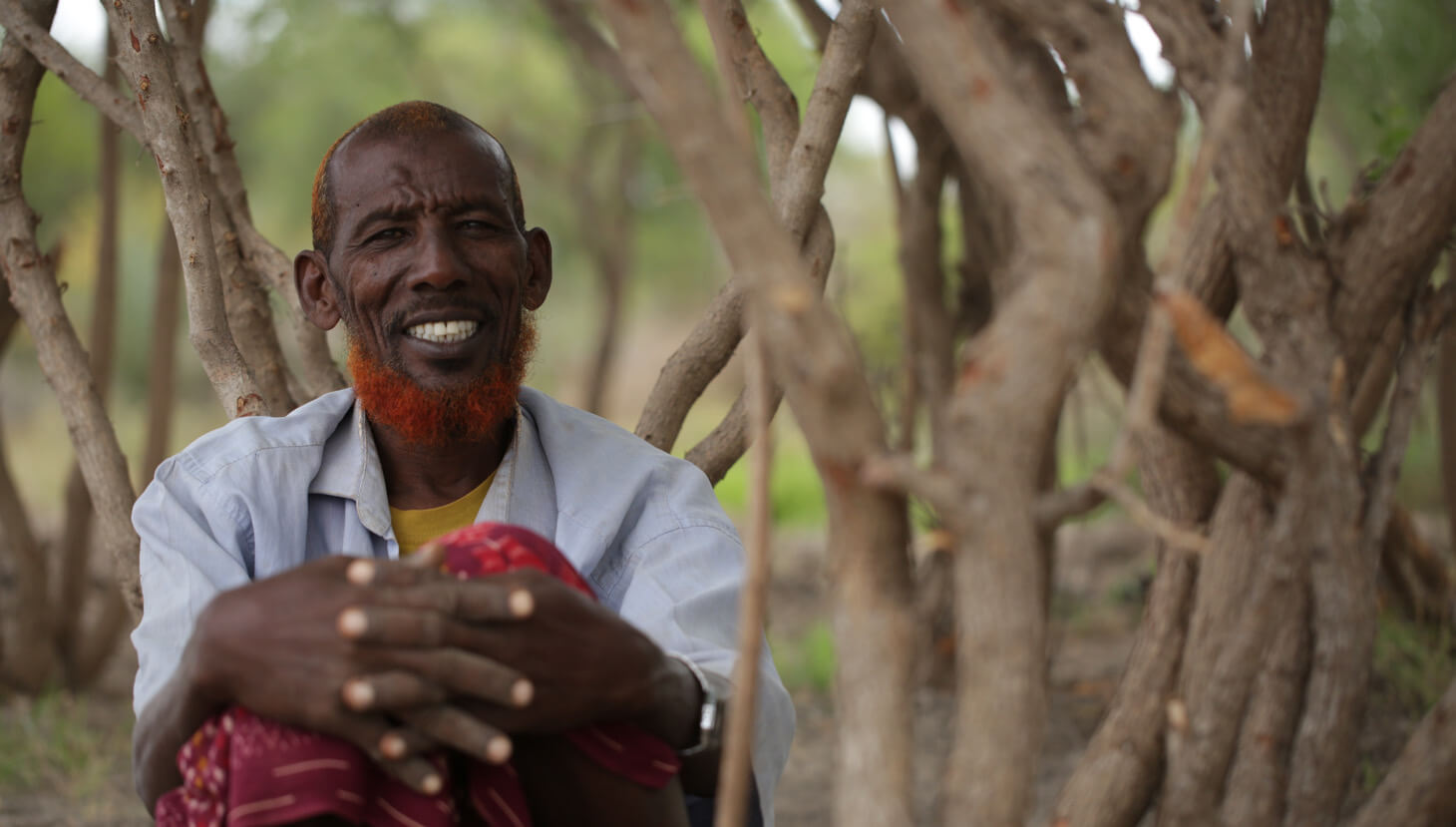 African old man sitted by a tree